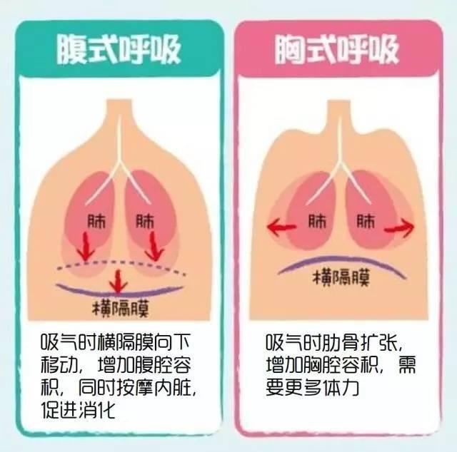 腹式呼吸法歌唱教學 Diaphragmatic breathing 海恩音樂歌唱訓練班